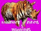 Rinoceronte Eventos y Producciones - Organización de eventos