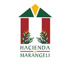 Hacienda Marangeli - Salones de actividades